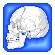 Learning Anatomy And Physiology Free Online Amazon Com Human Body Facts Fun Human Anatomy And Physiology