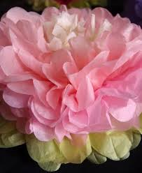 pink tissue paper 16 multi color tissue paper flower decorations pink combo 3