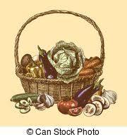vector of vegetables in basket fresh vegetable organic food set