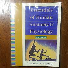 Fundamentals Of Anatomy And Physiology 6th Edition Siyingtan U0027s Items For Sale On Carousell