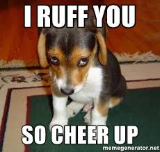Cheer Up Meme - 20 cute animal memes to cheer you up sayingimages com