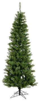 salem pencil pine tree traditional trees by