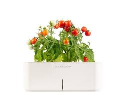 50 best click u0026 grow images on pinterest all products herb