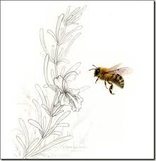 pencil and leaf honey bee and rosemary