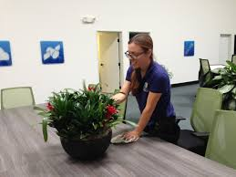 interior design new interior plant maintenance services small