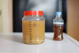 unwanted peels fermented and used to clean home u0026 design news
