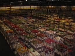 largest flower in the world aalsmeer flower market the largest flower auction in the world