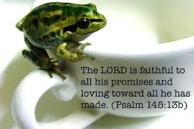 lesson abram and lot children u0027s bible lessons
