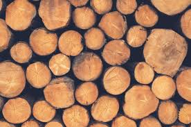 what is the best wood to use for cabinet doors what wood should you use in a pizza oven the ultimate guide