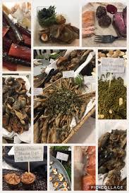 native alaskan plants 25 best alaska traditional foods images on pinterest alaska