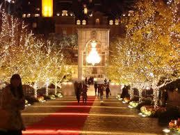 professional christmas lights christmas types of christmas lights decoration extraordinary