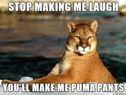 You Make Me Smile Meme - stop making me laugh meme