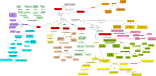 What Is A Concept Map What Is A Concept Map Concept Map Examples And Templates