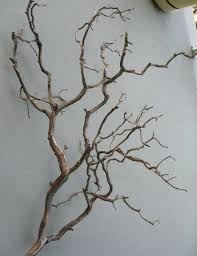 Wood Branches Home Decor 32 Best Lighting Decor Images On Pinterest Branches Home And