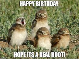 Birthday Animal Meme - happy birthday meme hilarious funny happy bday images