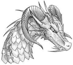 016 dragon head sketch by oakendragon on deviantart