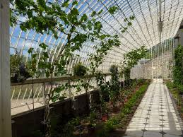 Inside Greenhouse Ideas by Green House Interior One Day Maybe I Will Have My Own Green House