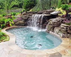 Natural Backyard Pools by 357 Best Swimming Pools Images On Pinterest Pool Ideas Backyard