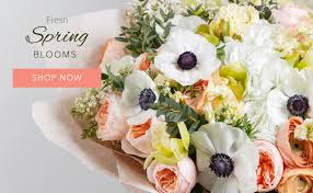 flower shops that deliver frederick florist flower delivery by amour flowers