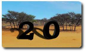 sprüche zum 20 geburtstag 20 geburtstagssprüche