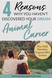 Haven T 4 Reasons Why You Haven U0027t Discovered Your Dream Animal Career Yet