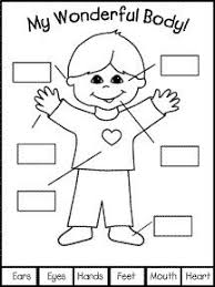 parts of the body pictures for preschool odkazodvas