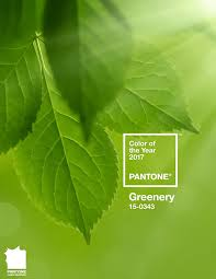 greenery potere al verde con il colore pantone del 2017 maamood