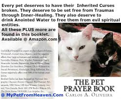 pet prayer pet deliverance ministry and pet home business