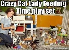 Cat Lady Meme - 20 hilarious cat lady memes you would totally love i can has