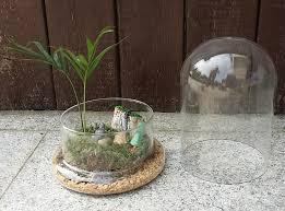 Miniature Flower Vases 2017 Air Plant Indoor Vase Large Terrarium Miniature Landscape