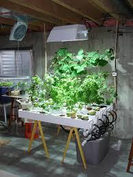 Indoor Vegetable Container Gardening - 177 best hydroponic gardening images on pinterest hydroponic
