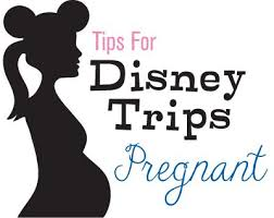 48 best travel during pregnancy images on travelling