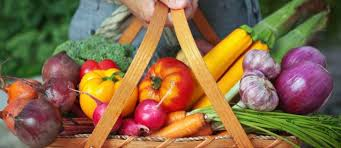 cuisine santé recettes de cuisine santé idées de recettes à base de cuisine santé
