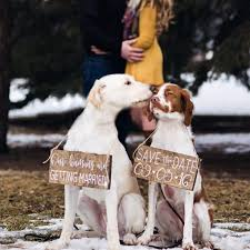 Save The Date Signs 22 Best Save The Date With Dogs Images On Pinterest Wedding