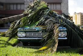Winter Garden Family Health Center Photos Hurricane Irma Thrashes Florida With Destructive Wind