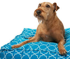 pizza dog bed luxury pet beds dog beds for large dogs small dogs