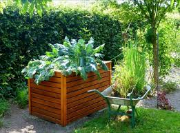 fall vegetable garden planter boxes vegetable garden planter