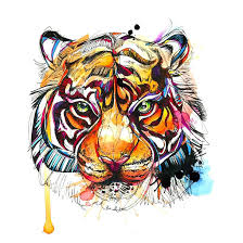 colorful bengal tiger design tiger design tiger