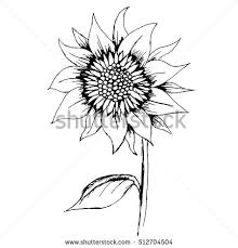 handdrawn decorative sunflower element vector stock vector