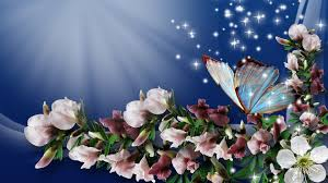 butterfly on the beautiful flowers wallpaper download 3840x2160