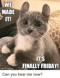 Friday Cat Meme - we made iti caption by kittyworks its finally friday can you hear