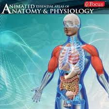 Anatomy And Physiology Dictionary Free Download Download Full Anatomy U0026 Physiology Animated 1 7 Apk Full Apk