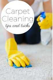 Cleaning Tips For Home by Carpet Cleaning Tips And Tricks The Country Chic Cottage