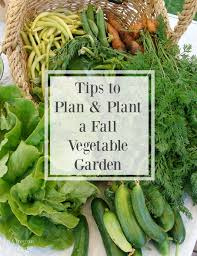 tips to plan and plant a fall vegetable garden