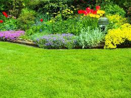 cura giardino cura prato sant ilario d enza cavriago aiuole giardino