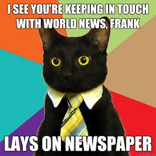 Newspaper Cat Meme - i see you re keeping in touch cat meme cat planet cat planet