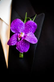 purple orchids best 25 purple orchid wedding ideas on orchid wedding