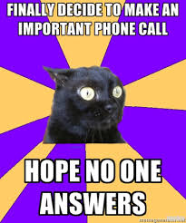 Internet Meme Cat - 15 best cat memes ever