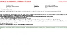 agent curriculum experience insurance resume submit tip vitae