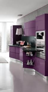 Purple Kitchen Decorating Ideas Kitchen Fetching Modern Jeff Lewis Kitchen Decoration Using